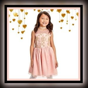 CHILDREN'S PLACE   Embroidered Lace Dress Pink 10
